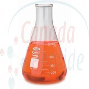 Glass Erlenmeyer Flask