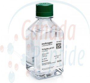 TE Buffer pH 8.0 500ML